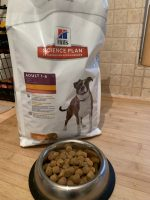 Hill's Dog food review