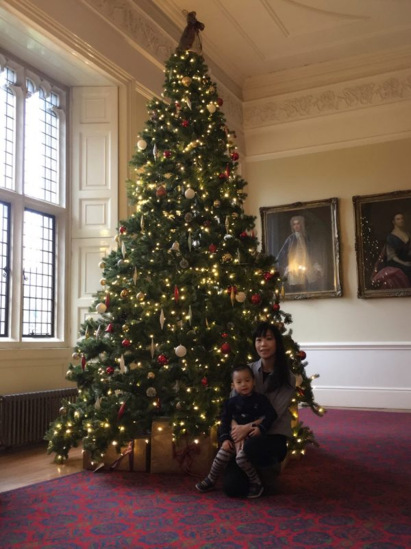 Beautiful Christmas Tree in Cardiff Castle