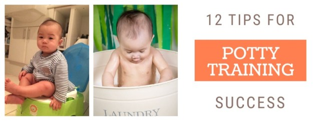 12 Tips for Potty Training Success