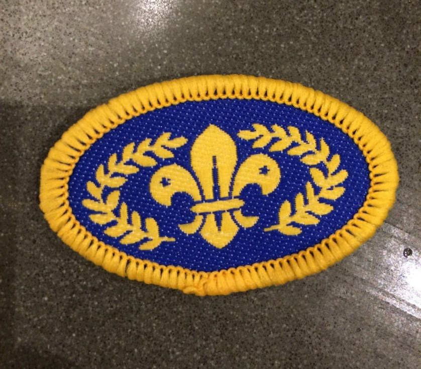 Chief Scouts Gold Award, Scouts, Son, 365