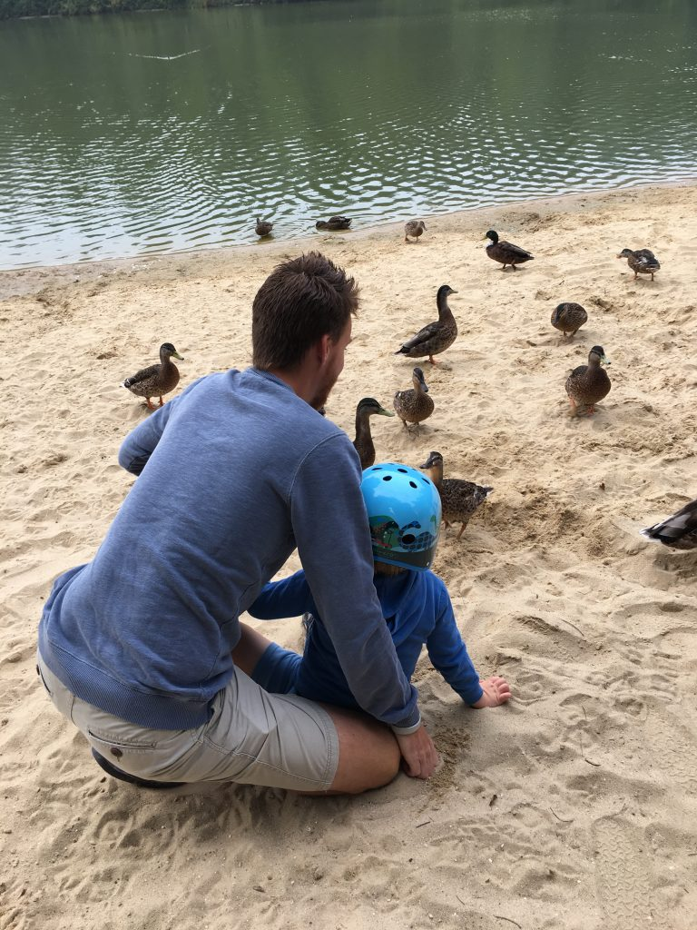 Ducks, Holiday, Feeding the ducks, Center Parcs, 365
