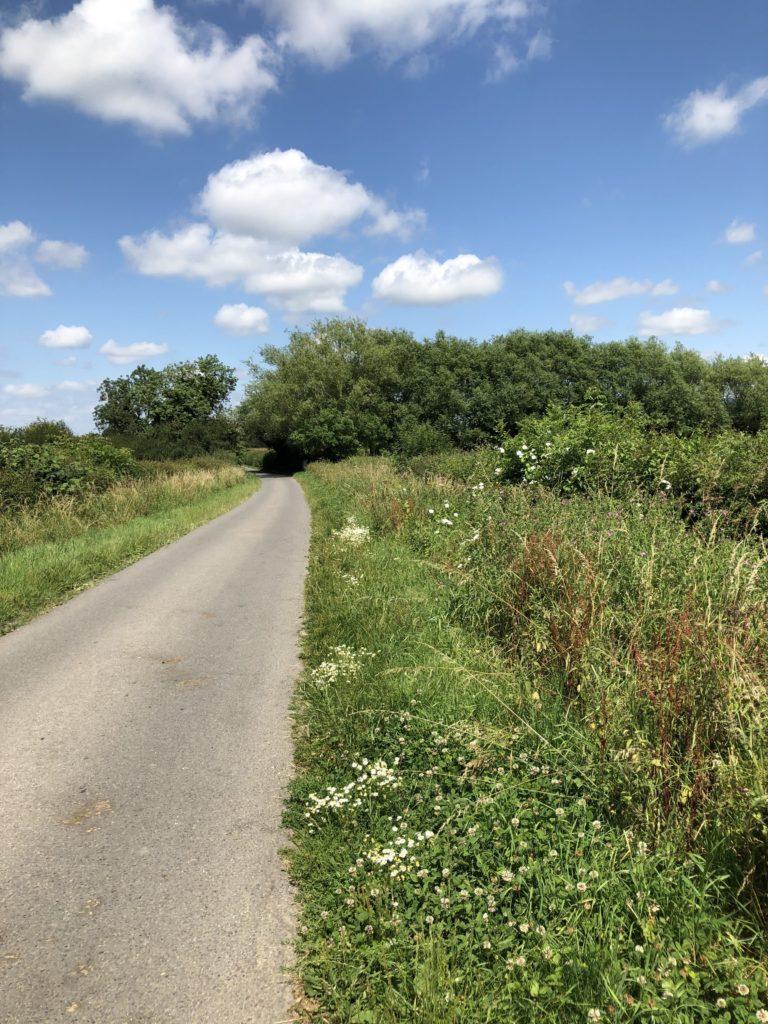 countryside, walking, summer, 365