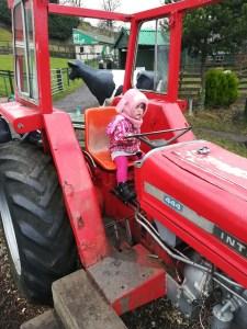 gorgie city farm tractor