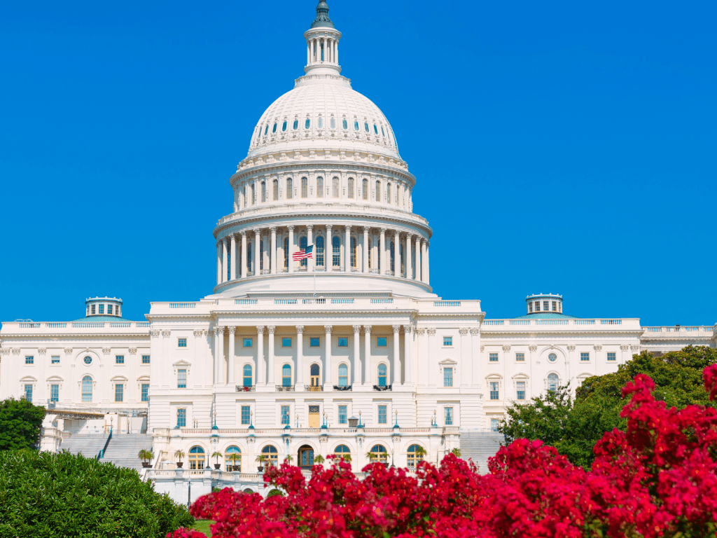 Why You Should Visit DC At Least Once
