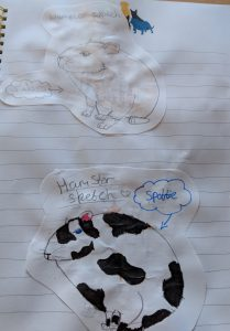 Two drawings of a hamster for home school work for a topic on pets
