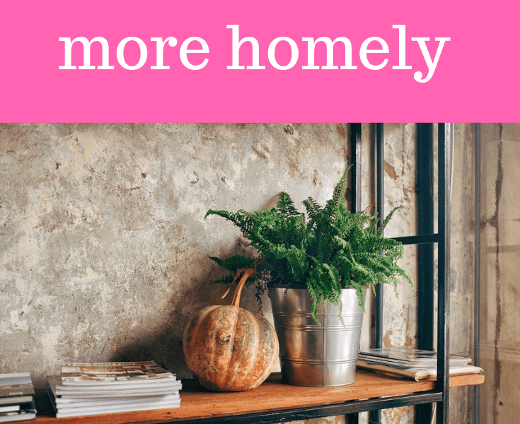 A shelf with a pot plant, pumpkin and book to make the home more homely