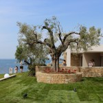Review of Ikos Olivia, Halkidiki