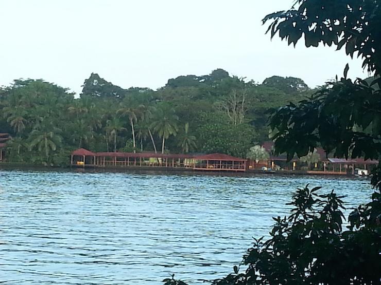 Tortuguero river. Copyright Lorenza Bacino