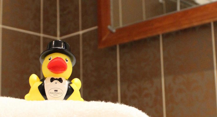 Rubber duck, Culloden Estate & Spa, Northern Ireland. Copyright ...
