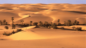 Mums Off Duty, Directory, health and wellbeing, Sands of Siwa
