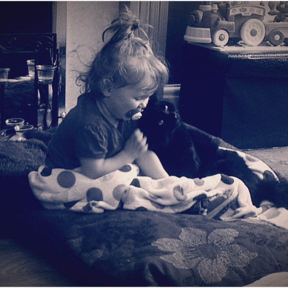 cats and babies, children and pets, pets and babies, cats and children