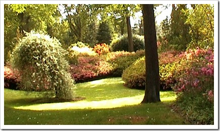 mountcongrevegardens