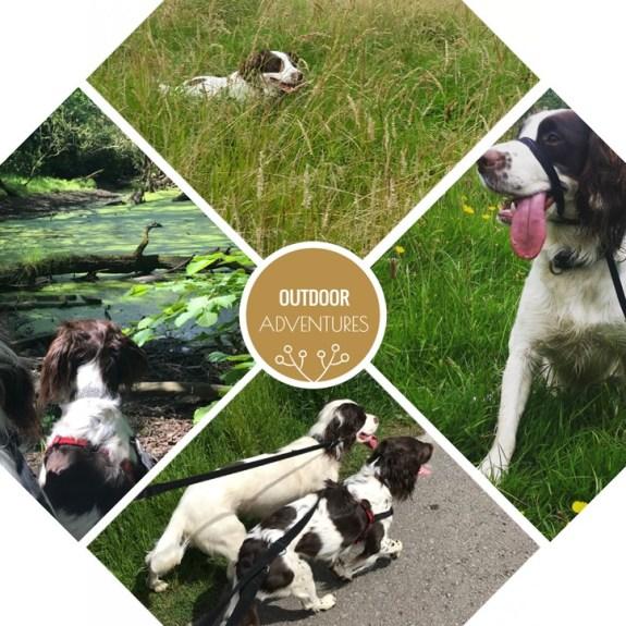 Outdoor Adventures With James Wellbeloved 11