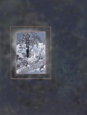 Solitude III