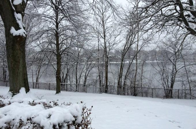 Silent Sunday: 20 January 2013