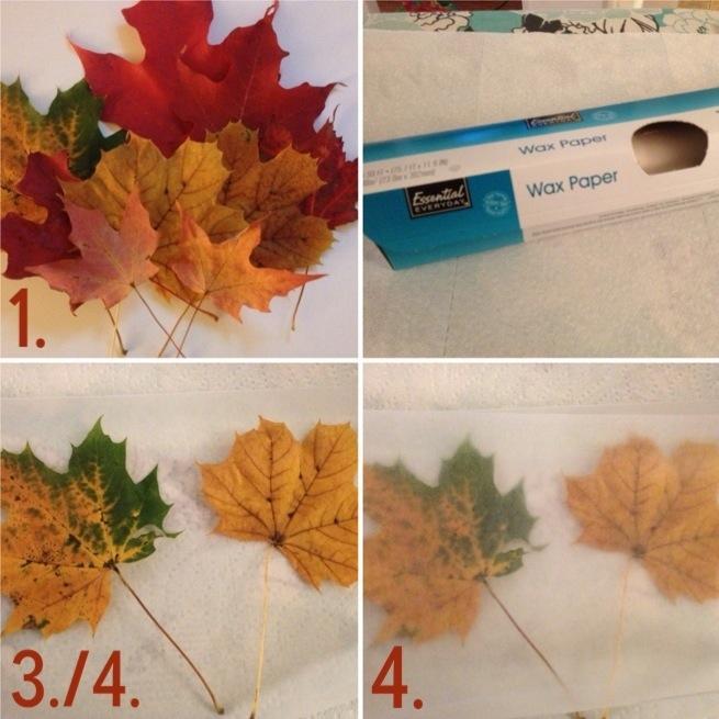 Waxed Leaves 1