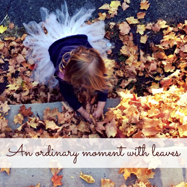 An Ordinary Moment with Leaves