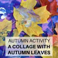 Make: collage with autumn leaves