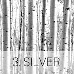 3. SILVER