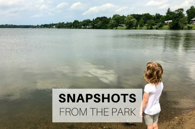 Snapshots from the park