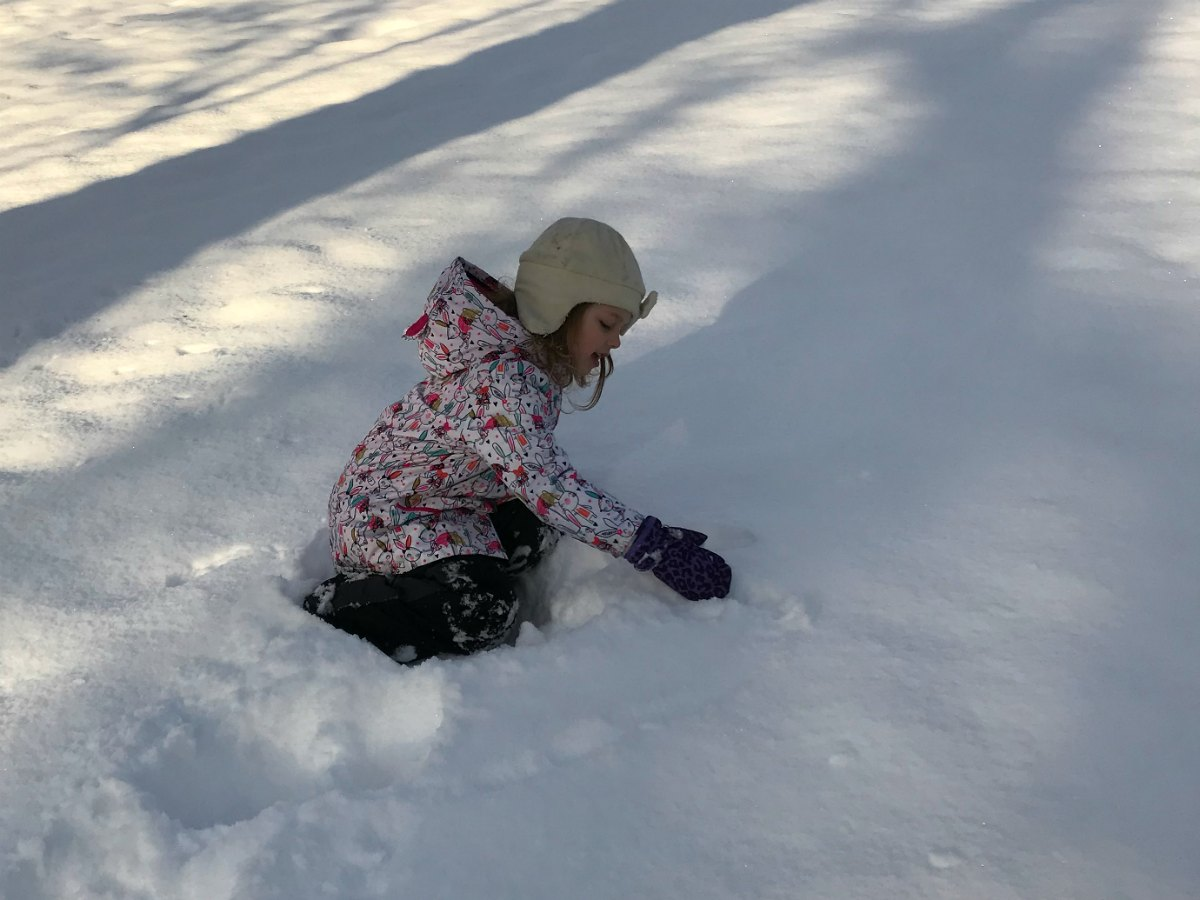 Snapshots from the snow 11