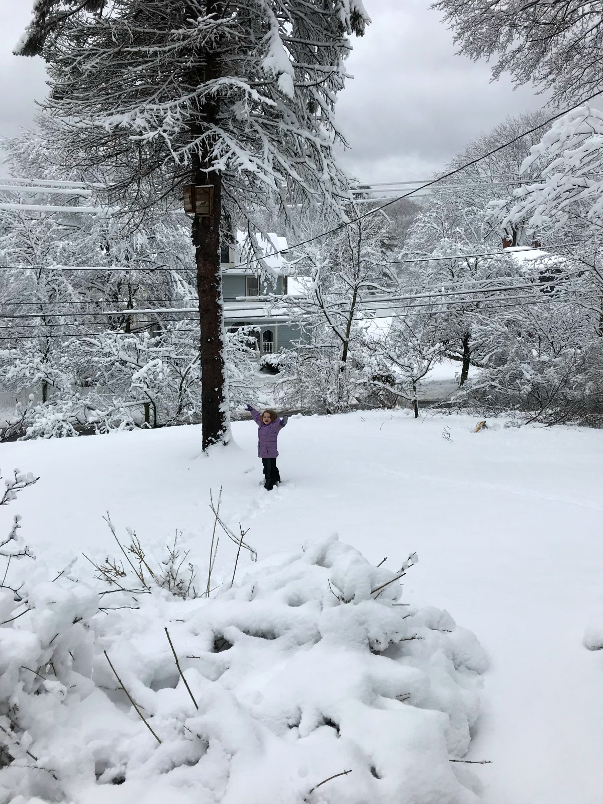 Snapshots of our winter Part 1 - 13