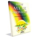 How Allah Provides