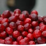 Christmas Cranberry Camembert