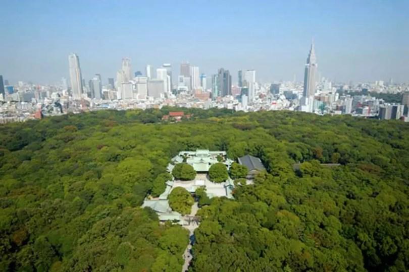 O Templo tem uma floresta de 170 mil árvores, com 275 espécies (Foto: Meiji Jingu Naien)