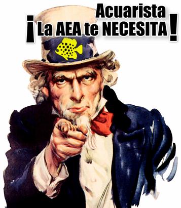 laAEAteNECESITA (Small)