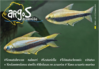 ARGOS 6