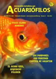 Boletín de la AEA nº3 2013