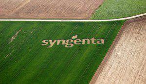 Nota-Syngenta-580x333