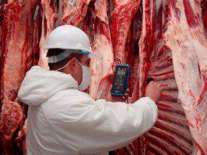 carne_frigorifico-e1461338160902
