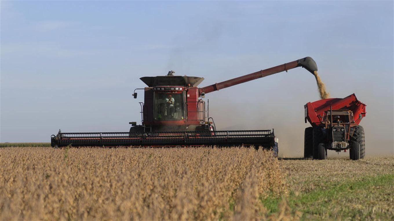 Resultado de imagen para aceite de soja exportacion