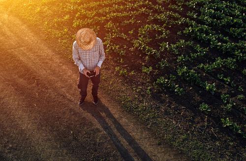 La importancia de la agricultura de precisión