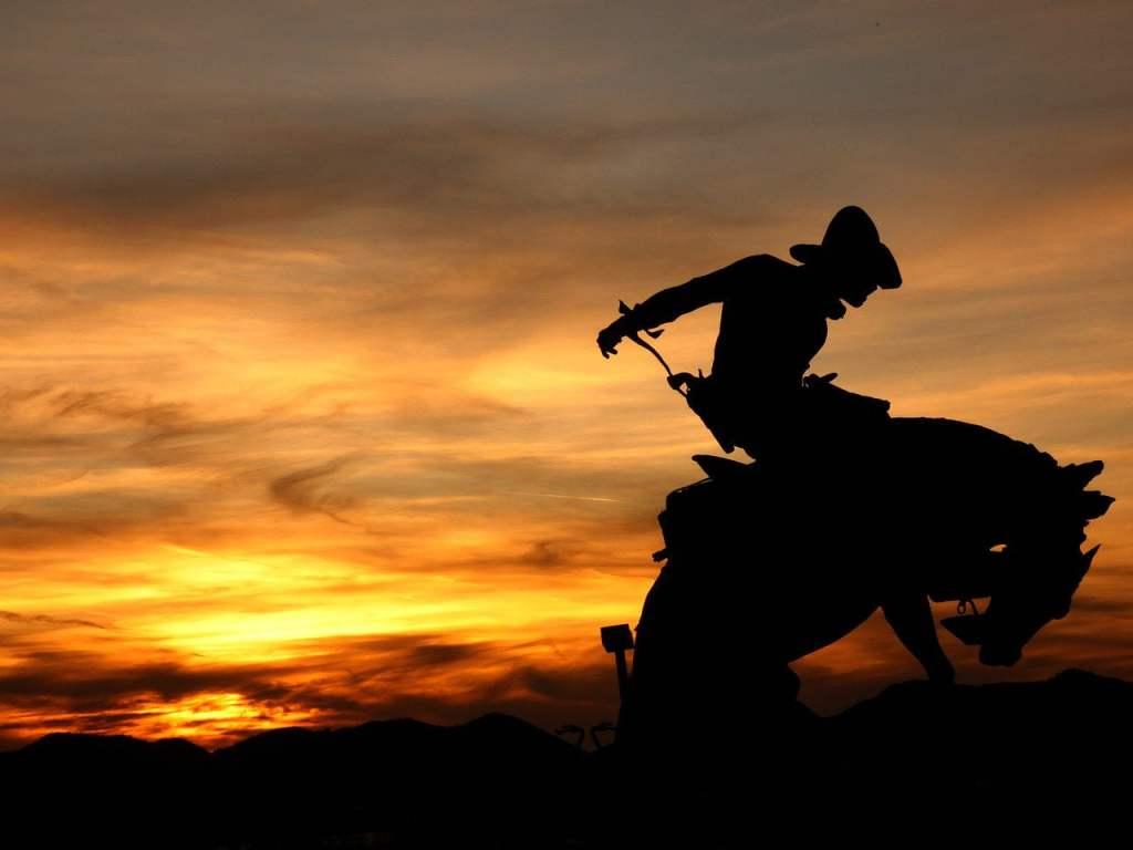 cowboy, rodeo, western