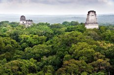 308323 160902993992199 113673238715175 332147 27214 n - Fotos de Construcciones de los Mayas y sus Descendientes