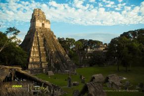 Tikal, el Gran Jaguar - foto por Jorge Santos de la pagina Entre Amates