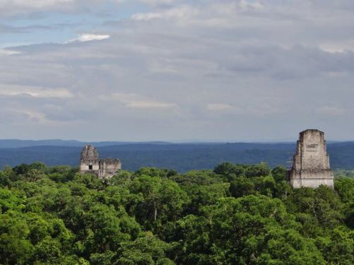 Tikal foto por Antonio Portillo - El Gran Jaguar en Tikal - pirámide Maya