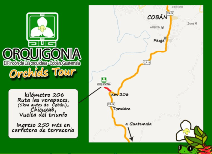 orquigonia mapa - Orquigonia, el Rincón de Las Orquídeas en Cobán