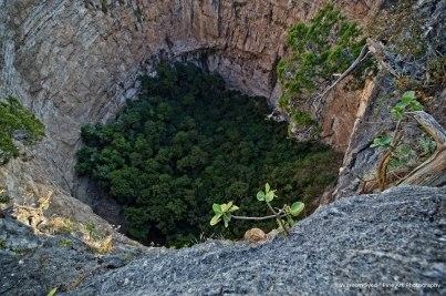 El bosque al fondo del Cimarron Huehuetenango foto por Waseem Syed - El Departamento de Huehuetenango