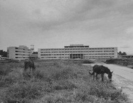 Hospital Roosevelt en 1963 - Galería – Fotos de Guatemala de Antaño