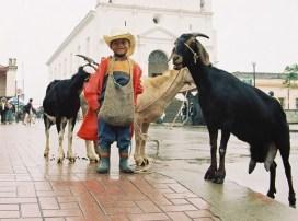 Chapincito con personalidad - Santa Cruz del Quiché - foto por Osorious Oso
