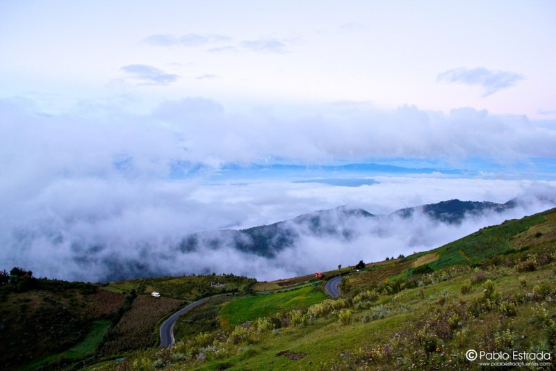 p estrada los Cuchumatanes 12437 - Tipos de Vegetación de Guatemala