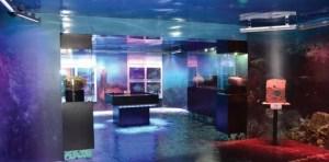 sala 870x430 300x148 - Museo Lacustre resguarda piezas de Samabaj