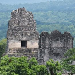 Tikal - foto por Rony Rodriguez
