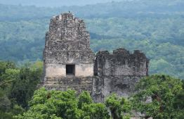 Tikal foto por Rony Rodriguez - Galeria de Fotos de Guatemala por Rony Rodriguez