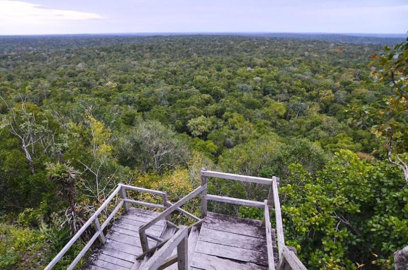 Vista desde La Danta, El Mirador, Peten - foto por Rony Rodriguez de