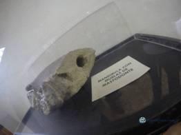 """Mandibula de mastodonte con molares incrustados - Guía Turística - Sitio Paleontológico """"El Mamut"""""""